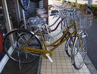 bs-cycle1.jpg